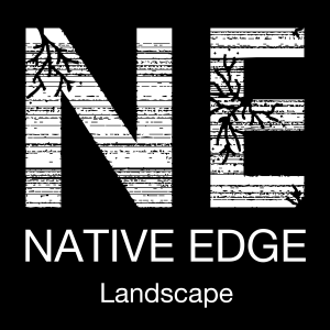Native Edge Landscape Logo Icon