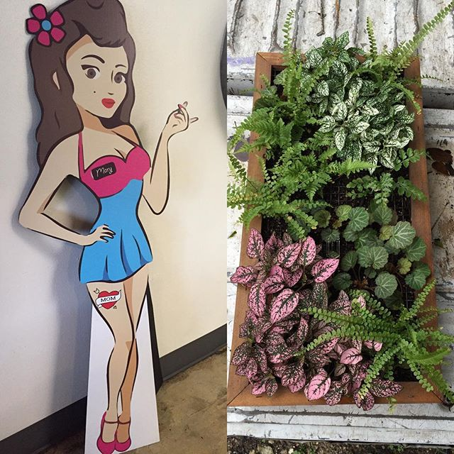So happy to have taken part in this fun little project for a new local shop @maryspopshop !! Go and check them out, and see the awesome wall planter we did at their Red River and 32nd Street location! #wallplanter #shoplocal #shoutout #local #atx #atxlife #nativeedge #nativeedgelandscape